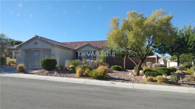 10914 Moonbeam Glow, Las Vegas, NV 89135 (MLS #2032566) :: ERA Brokers Consolidated / Sherman Group
