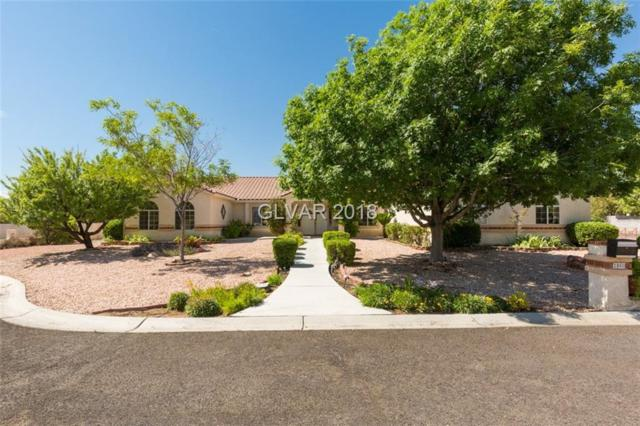 3860 Quadrel, Las Vegas, NV 89129 (MLS #2033251) :: ERA Brokers Consolidated / Sherman Group