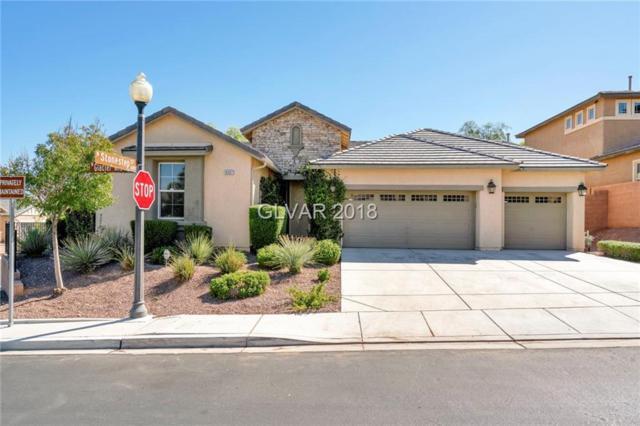 10307 Glacier Mist, Las Vegas, NV 89149 (MLS #2033561) :: Signature Real Estate Group