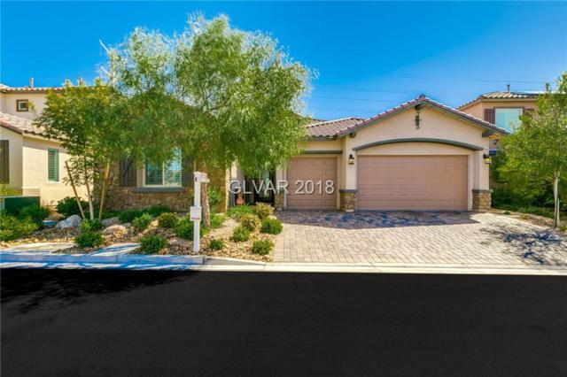 7308 Durand Park, Las Vegas, NV 89166 (MLS #2033597) :: Signature Real Estate Group