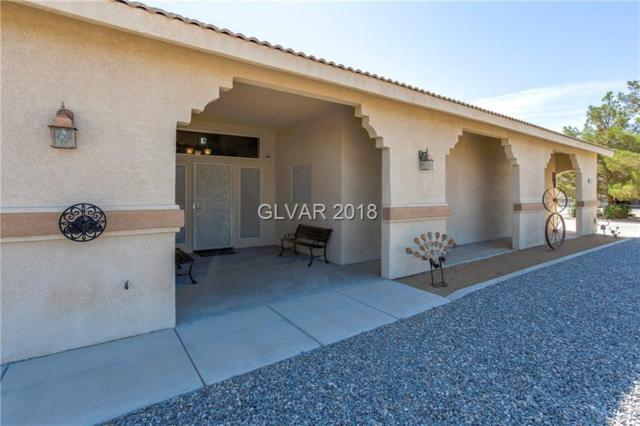 2651 S Red Rock, Pahrump, NV 89048 (MLS #2033828) :: Trish Nash Team