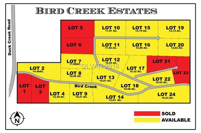 4900 E Bird Creek Road Parcel 17, Ely, NV 89301 (MLS #2034559) :: The Lindstrom Group