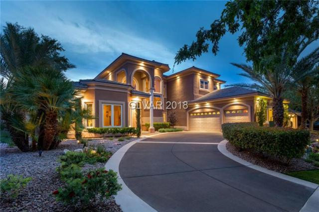 2025 Grouse, Las Vegas, NV 89134 (MLS #2035833) :: ERA Brokers Consolidated / Sherman Group
