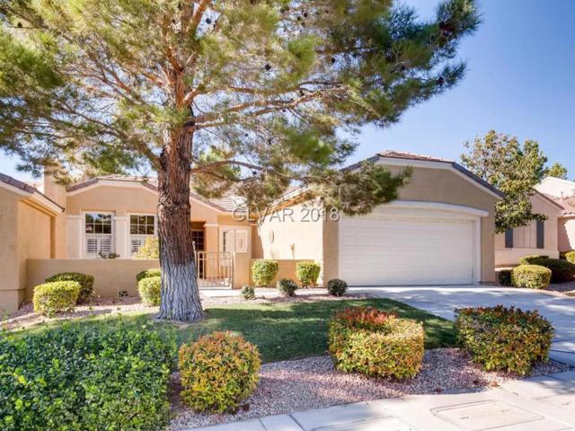 2648 Harrisburg, Henderson, NV 89052 (MLS #2035913) :: Sennes Squier Realty Group
