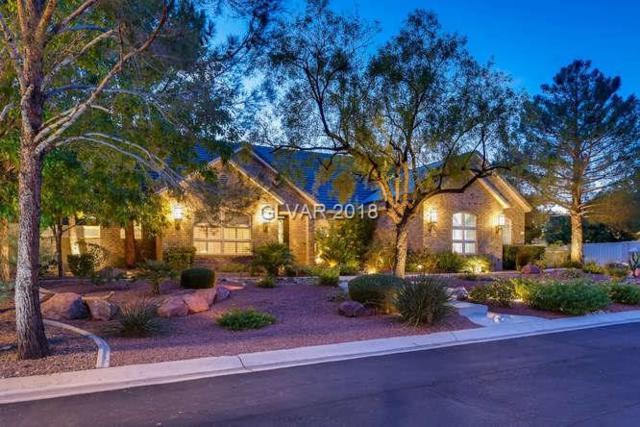 6245 Whispering Brook, Las Vegas, NV 89149 (MLS #2037447) :: Vestuto Realty Group