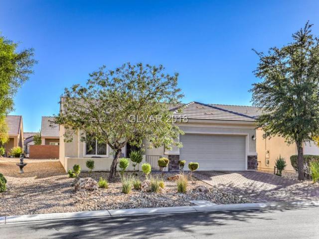7762 Coast Jay, North Las Vegas, NV 89084 (MLS #2038891) :: Vestuto Realty Group