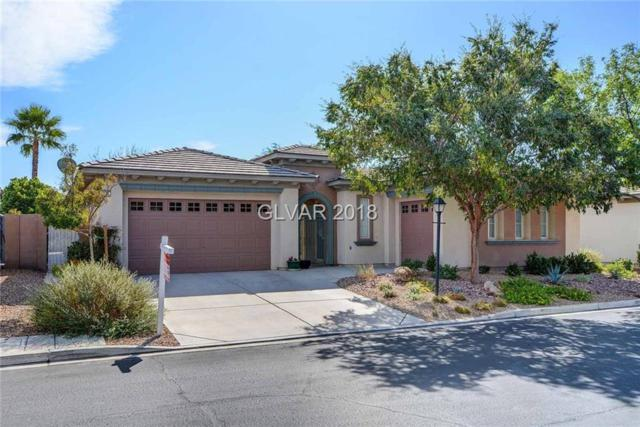 3374 Garden Shower, Las Vegas, NV 89135 (MLS #2042063) :: Vestuto Realty Group