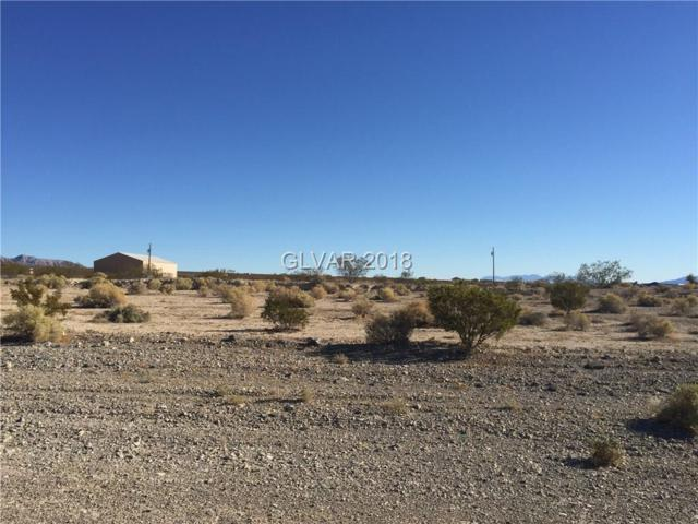 3800 N Araby, Pahrump, NV 89060 (MLS #2042861) :: The Snyder Group at Keller Williams Marketplace One