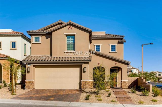 11824 Mino Rio, Las Vegas, NV 89138 (MLS #2043433) :: Vestuto Realty Group