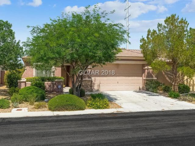 3644 Moonlit Rain, Las Vegas, NV 89135 (MLS #2043498) :: ERA Brokers Consolidated / Sherman Group