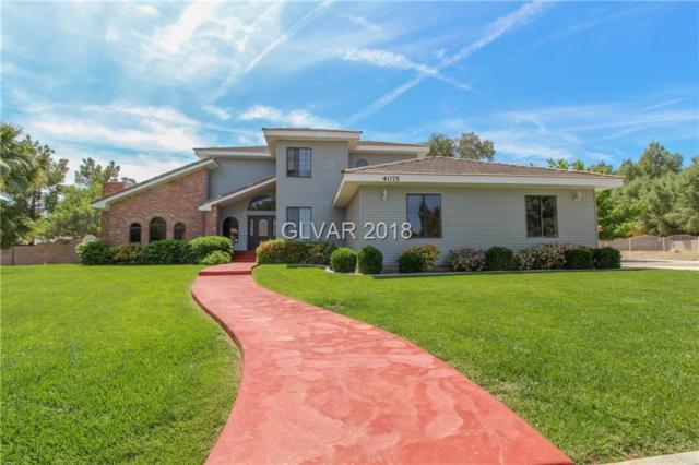 4075 Oquendo, Las Vegas, NV 89120 (MLS #2044885) :: The Machat Group   Five Doors Real Estate