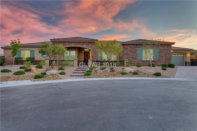 9791 Addie Meadow, Las Vegas, NV 89149 (MLS #2045109) :: Vestuto Realty Group