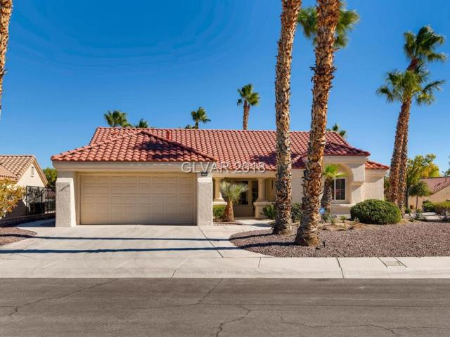 3100 Wonderview, Las Vegas, NV 89134 (MLS #2045353) :: Vestuto Realty Group