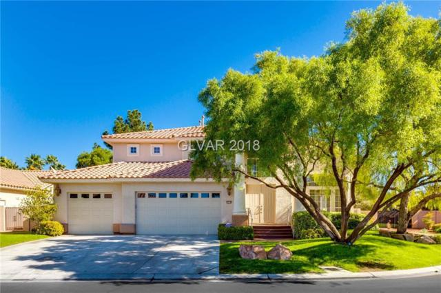 3974 Tropical Vine, Las Vegas, NV 89147 (MLS #2045470) :: The Machat Group   Five Doors Real Estate