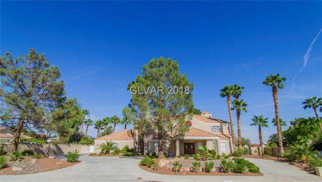 2140 Americas Cup, Las Vegas, NV 89117 (MLS #2045801) :: The Machat Group | Five Doors Real Estate
