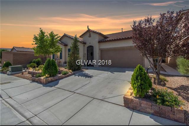8205 San Mateo, North Las Vegas, NV 89085 (MLS #2046877) :: Vestuto Realty Group
