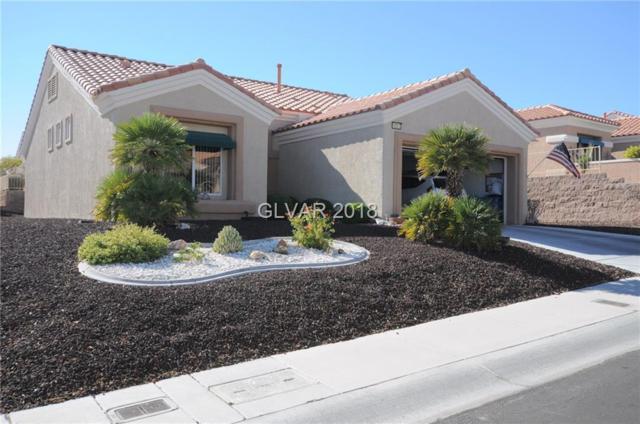 10313 Long Leaf, Las Vegas, NV 89134 (MLS #2046895) :: Sennes Squier Realty Group