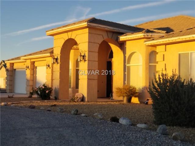 2961 S Dandelion, Pahrump, NV 89048 (MLS #2046916) :: The Machat Group | Five Doors Real Estate
