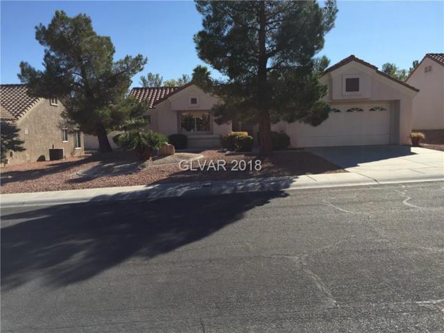 9505 Sundial, Las Vegas, NV 89134 (MLS #2047130) :: Sennes Squier Realty Group