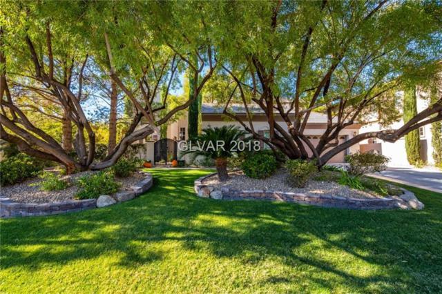 1201 Mersault, Las Vegas, NV 89144 (MLS #2047252) :: The Machat Group | Five Doors Real Estate