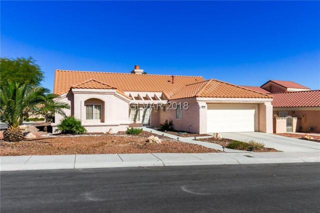9100 Marble, Las Vegas, NV 89134 (MLS #2047255) :: Sennes Squier Realty Group