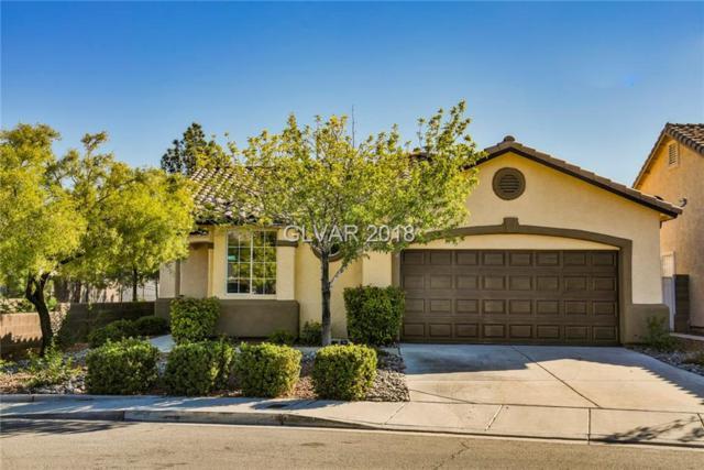 3232 Cherum, Las Vegas, NV 89135 (MLS #2047753) :: Nancy Li Realty Team - Chinatown Office