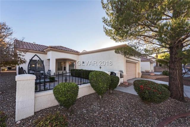 10433 Junction Hill, Las Vegas, NV 89134 (MLS #2048251) :: Sennes Squier Realty Group
