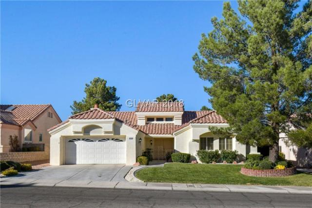 9600 Sundial, Las Vegas, NV 89134 (MLS #2048564) :: Sennes Squier Realty Group