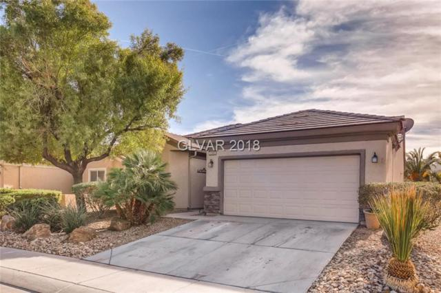 2305 Carrier Dove, North Las Vegas, NV 89084 (MLS #2048718) :: Signature Real Estate Group