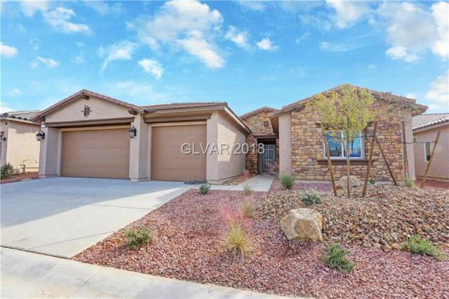 5589 E Volterra, Pahrump, NV 89061 (MLS #2049070) :: The Machat Group | Five Doors Real Estate