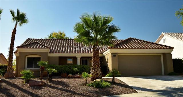 10001 Netherton, Las Vegas, NV 89134 (MLS #2049206) :: Sennes Squier Realty Group