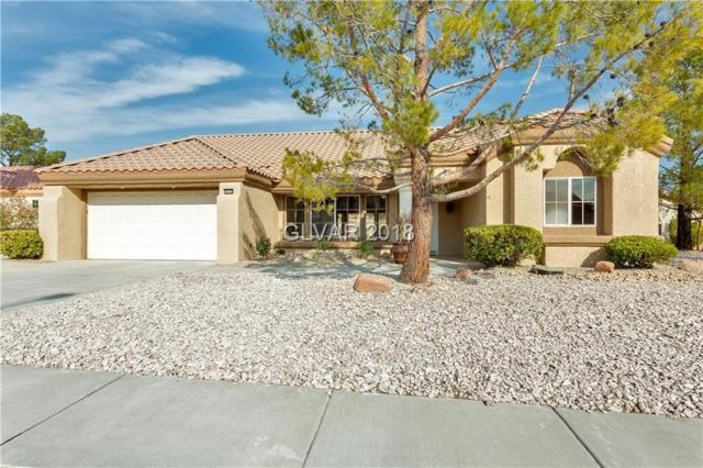 9028 Firebird, Las Vegas, NV 89134 (MLS #2049229) :: Signature Real Estate Group