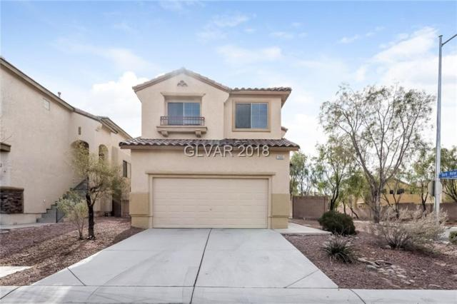 2905 Salado Creek, North Las Vegas, NV 89081 (MLS #2049276) :: ERA Brokers Consolidated / Sherman Group