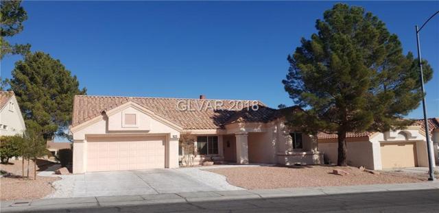 9532 Sundial, Las Vegas, NV 89134 (MLS #2049337) :: Sennes Squier Realty Group
