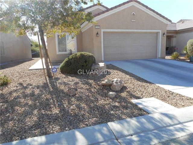3325 Herring Gull, North Las Vegas, NV 89084 (MLS #2049365) :: ERA Brokers Consolidated / Sherman Group