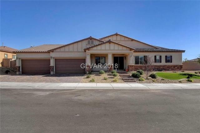 6330 Goldstrike Canyon, Las Vegas, NV 89149 (MLS #2049445) :: ERA Brokers Consolidated / Sherman Group