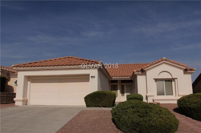 9812 Rosamond, Las Vegas, NV 89134 (MLS #2049473) :: Sennes Squier Realty Group