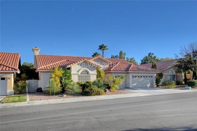 1508 Castle Crest, Las Vegas, NV 89117 (MLS #2049501) :: ERA Brokers Consolidated / Sherman Group