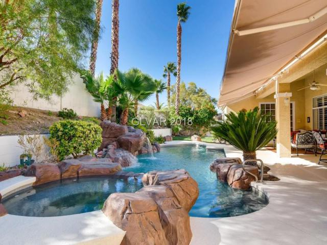 2035 Bobtail, Henderson, NV 89012 (MLS #2049513) :: Signature Real Estate Group