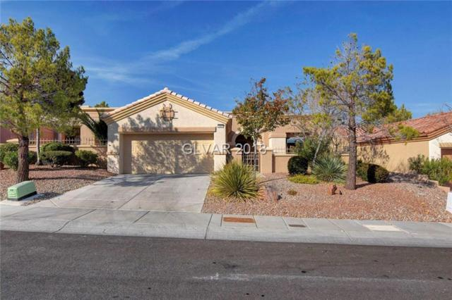10626 Sky Meadows, Las Vegas, NV 89134 (MLS #2049794) :: Sennes Squier Realty Group