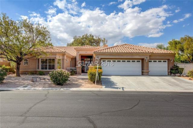 7221 Chaparral Cove, Las Vegas, NV 89131 (MLS #2050652) :: ERA Brokers Consolidated / Sherman Group