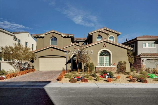 322 Elder View, Las Vegas, NV 89138 (MLS #2052294) :: ERA Brokers Consolidated / Sherman Group