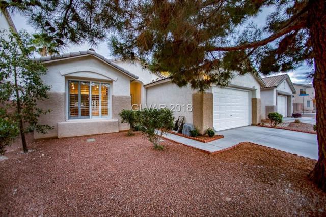 2425 Parasail Point, North Las Vegas, NV 89031 (MLS #2052493) :: ERA Brokers Consolidated / Sherman Group