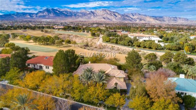 1417 Iron Hills, Las Vegas, NV 89134 (MLS #2053056) :: ERA Brokers Consolidated / Sherman Group