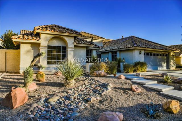 9624 Cliff View, Las Vegas, NV 89117 (MLS #2053884) :: ERA Brokers Consolidated / Sherman Group