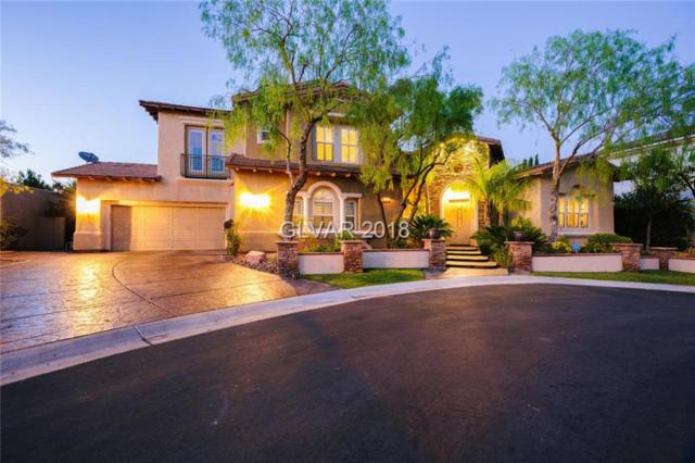 11558 Trevi Fountain, Las Vegas, NV 89138 (MLS #2054551) :: Signature Real Estate Group