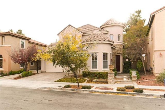 2270 Cookman, Las Vegas, NV 89135 (MLS #2055303) :: Sennes Squier Realty Group