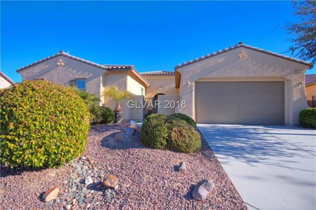 4895 S Bientian, Pahrump, NV 89061 (MLS #2055531) :: The Snyder Group at Keller Williams Marketplace One