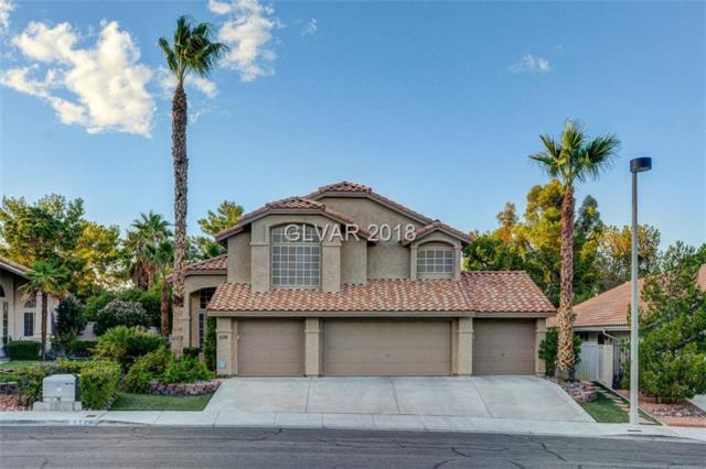 9524 Scenic Sunset, Las Vegas, NV 89117 (MLS #2055895) :: The Snyder Group at Keller Williams Marketplace One