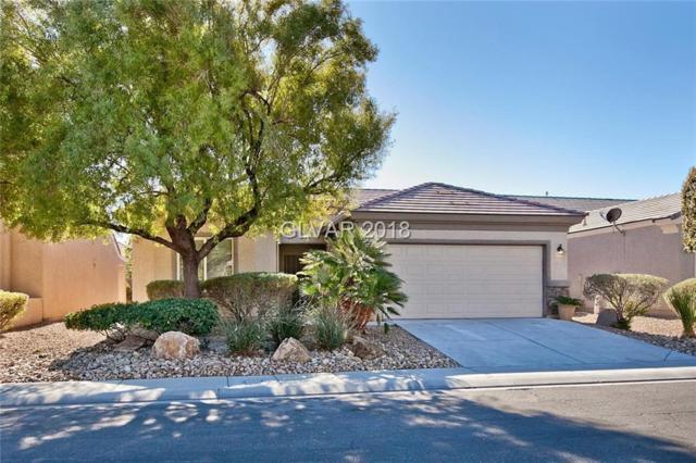 2305 Carrier Dove, North Las Vegas, NV 89084 (MLS #2056111) :: Vestuto Realty Group